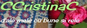 Recomandarea de miercuri: blogul CristineiC