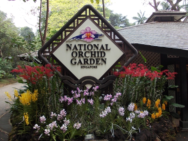 National-Orchid-Garden