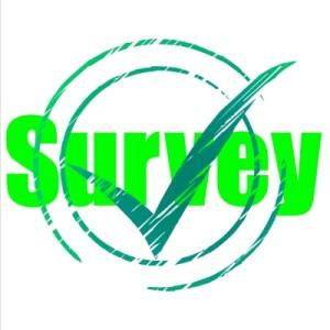 O variantă de venituri suplimentare: participarea la sondajele de opinie